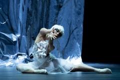 Schwanensee | Ballett Hagen